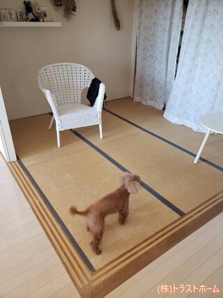 マンション内のクローゼットと洋室へリフォームしました♪のビフォー画像